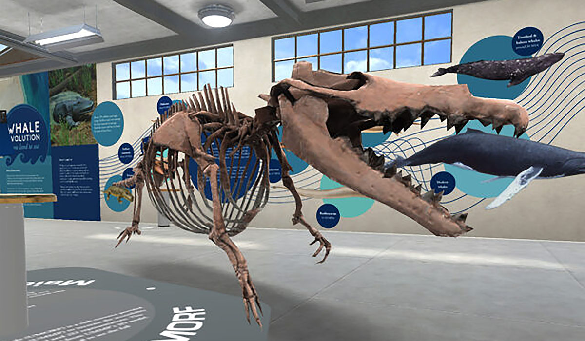 210407 VRwhale Maiacetus Page 1 640x382