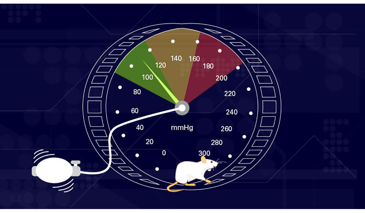 Blood Pressure Dial Mice Wheel Gatewayextension