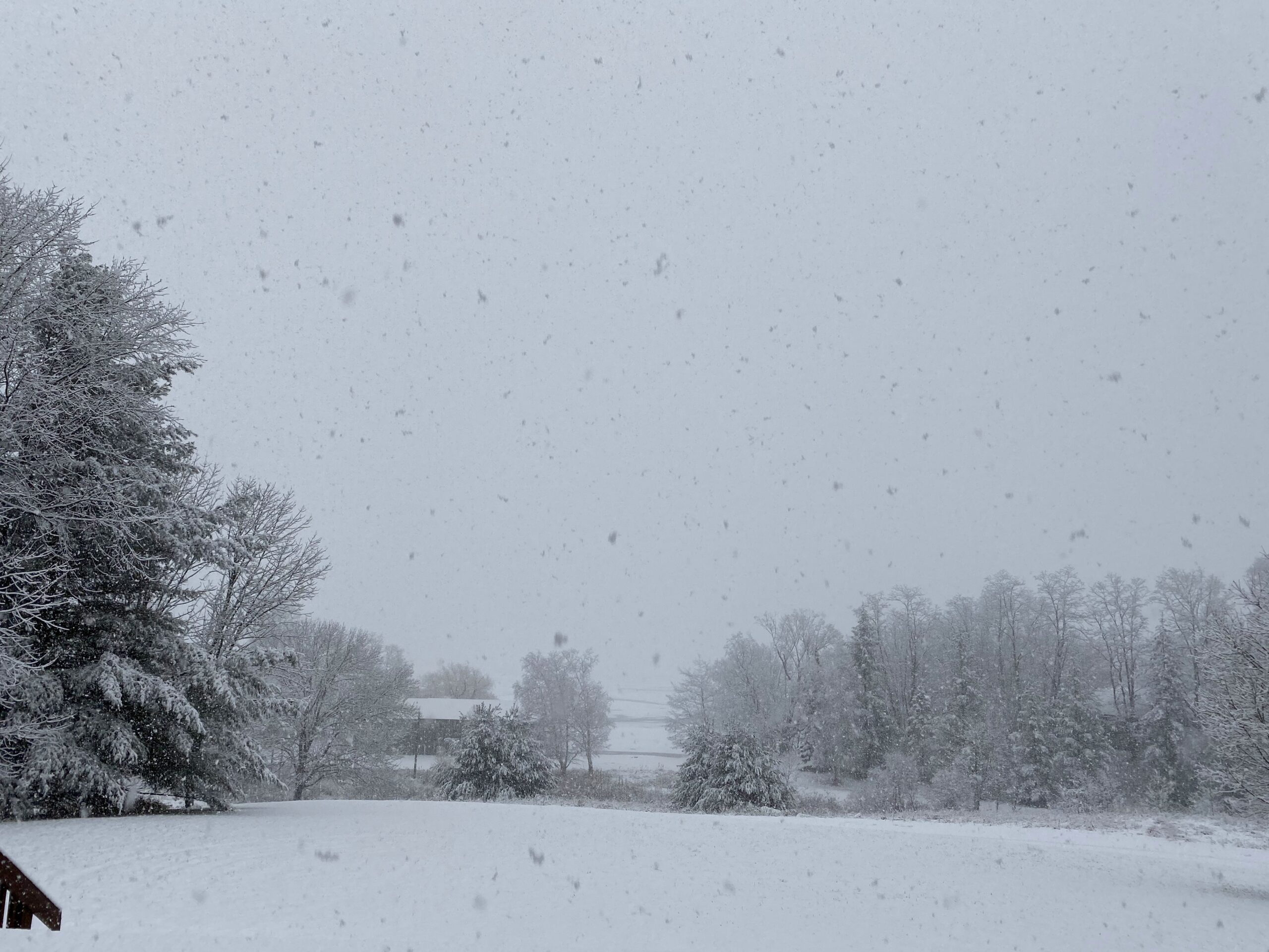 A Snowy Day at Camp Michigania