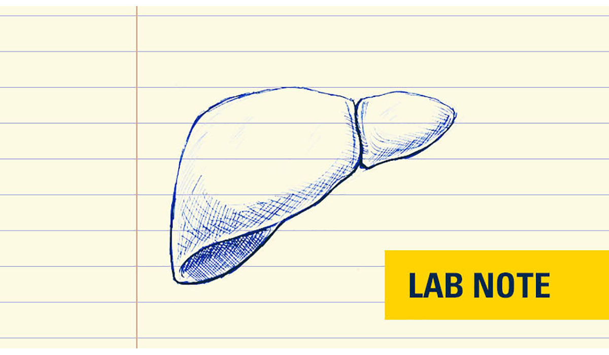 Lab Notes Liver Badge Yellow Gatewayextension