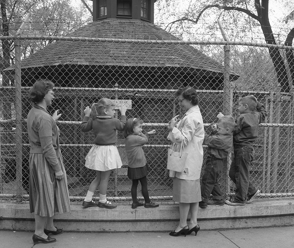 A family waits to see the bears Maize and Blue in May 1960