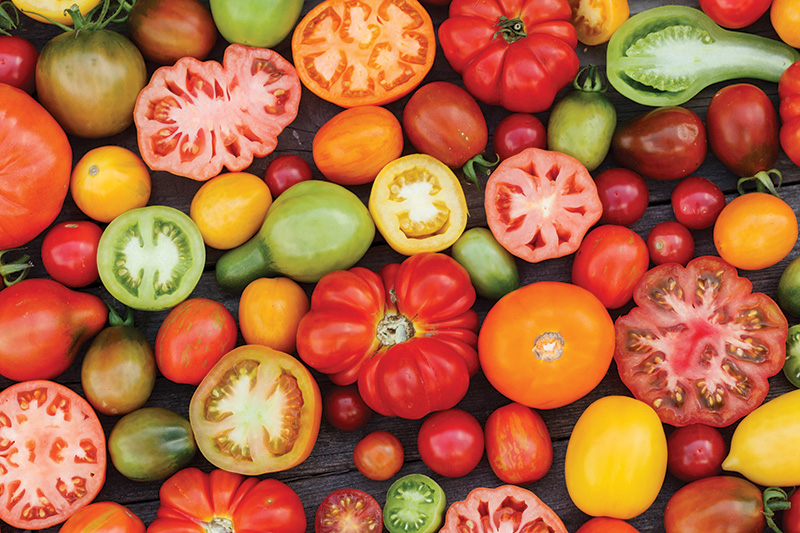 Colorful,Tomatoes