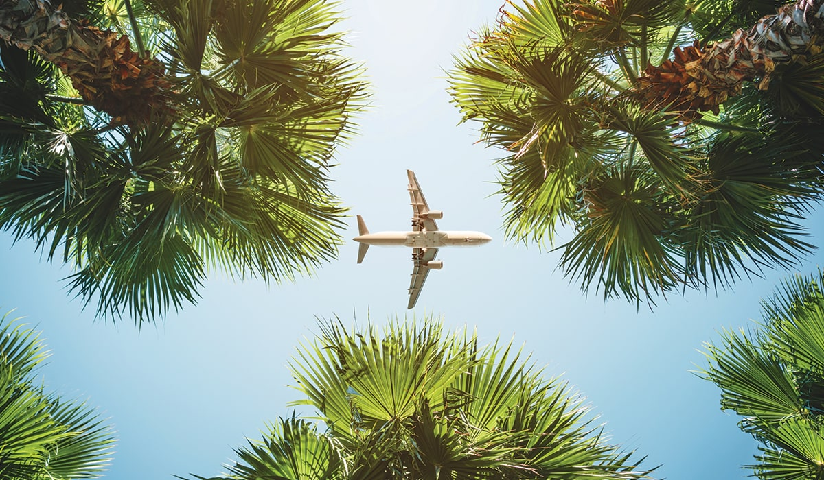 Looking up at an airplane framed by trees