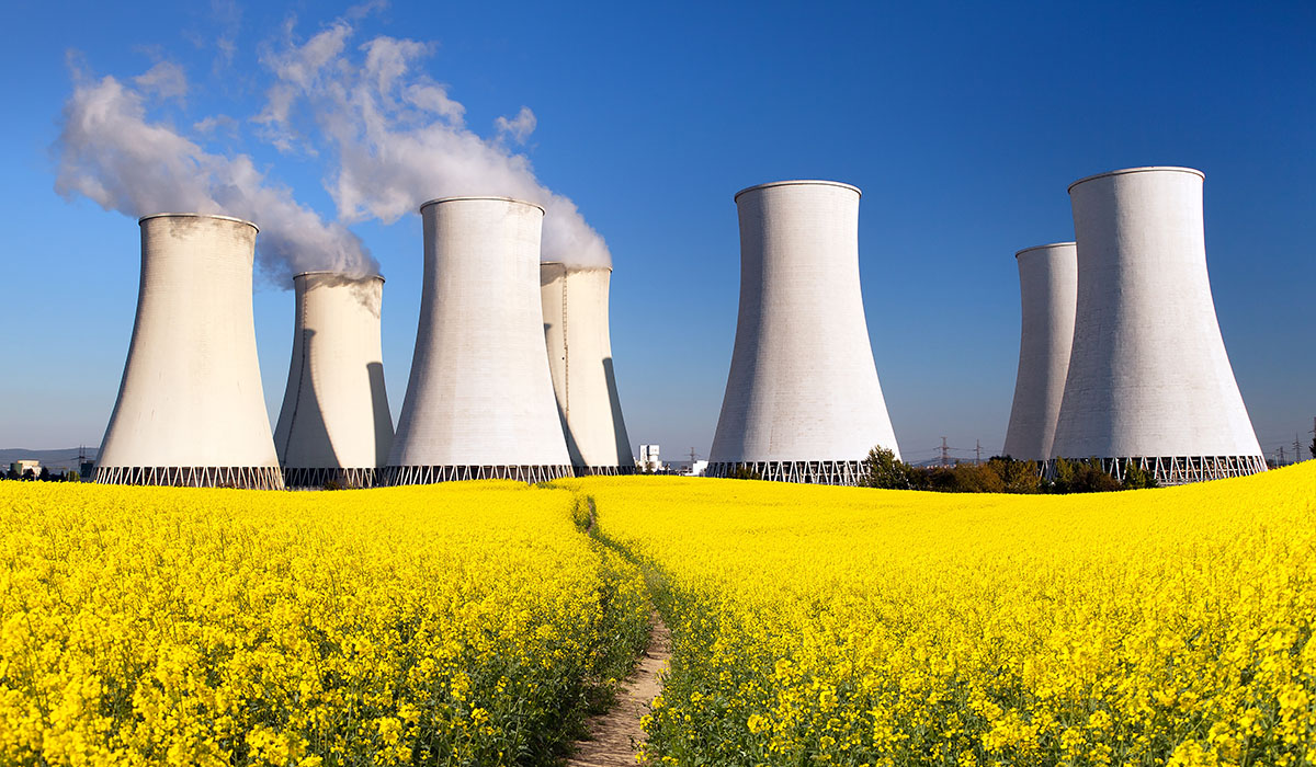 Nuclear Power Plant, Cooling Tower, Field Of Rapeseed